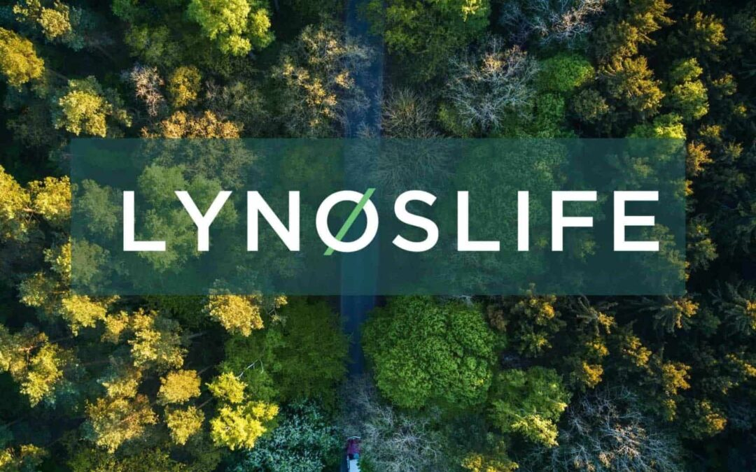 Lynoslife: How we live our values every day